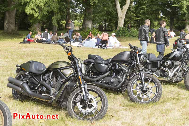 Motors-and-Soul, Harley V Rod